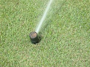 Empresa de Sistema de Irrigação