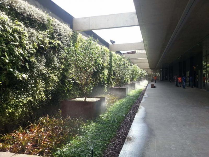 Sistema de Irrigação para Jardim Vertical