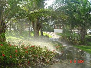 Sistemas de Automação de Irrigação de Jardins